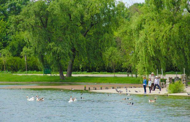 parcurile