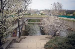 pod tineretului