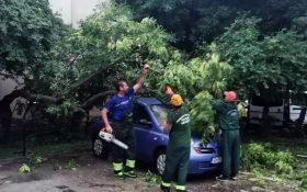 V-ati ales cu masina avariata in urma furtunii de vineri? Primaria va despagubeste